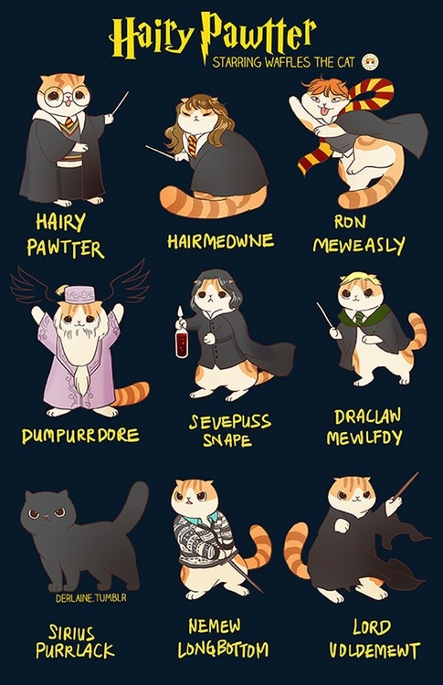 Image result for hairy pawtter